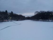 井の頭池(かいぼり中)の積雪3