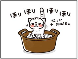 ひえひえセット5