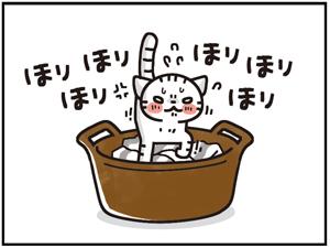 ひえひえセット6