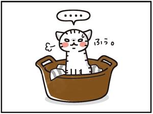 ひえひえセット7