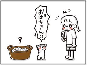 ひえひえセット9