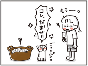 ひえひえセット10