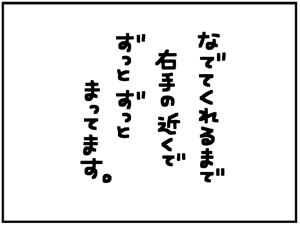 忠猫マル公6
