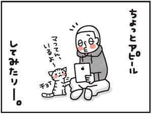 忠猫マル公9