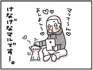 忠猫マル公10