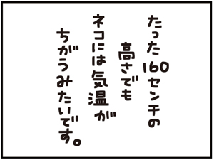 160センチ5