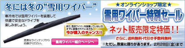 snow_banner14-3.jpg
