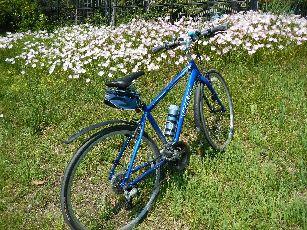 サイクリング5-5 (27)