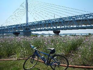 サイクリング5-5 (33)