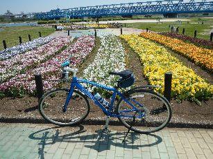 サイクリング5-5 (37)