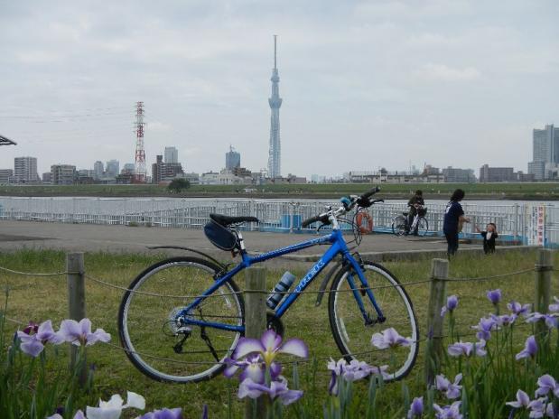 サイクリング6-2 (11)