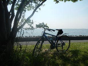 サイクリング6-9 (15)