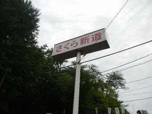 王子アジサイ2013 (50)