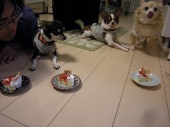 ケーキ待て1