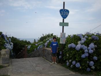 階段国道1