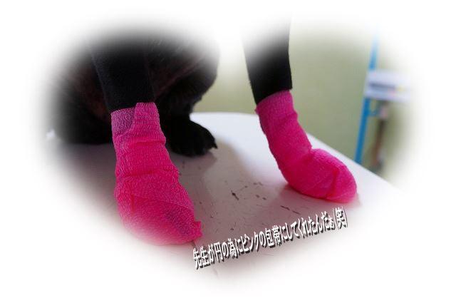 ピンクの包帯