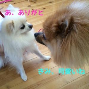 fc2blog_20141003215831c09.jpg