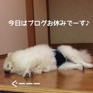 fc2blog_20141018221523fd5.jpg