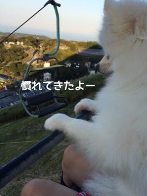 fc2blog_20141021180910404.jpg