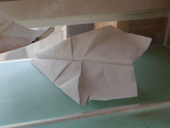 紙飛行機ツー (29)