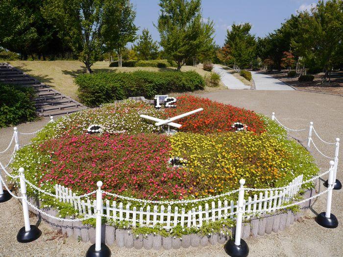 自然環境体験公園ツー (4)