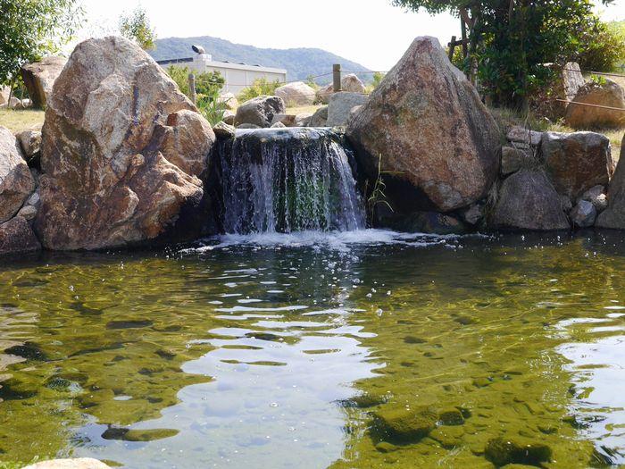 自然環境体験公園ツー (25)