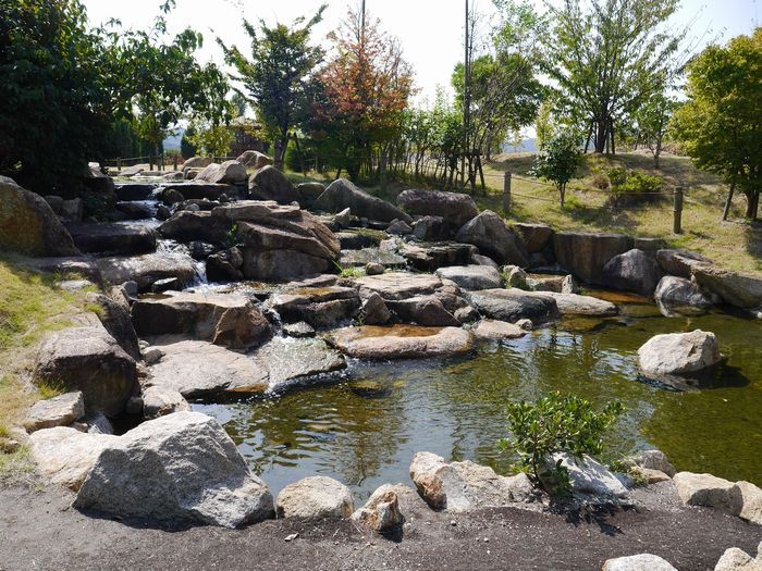 自然環境体験公園ツー (7)