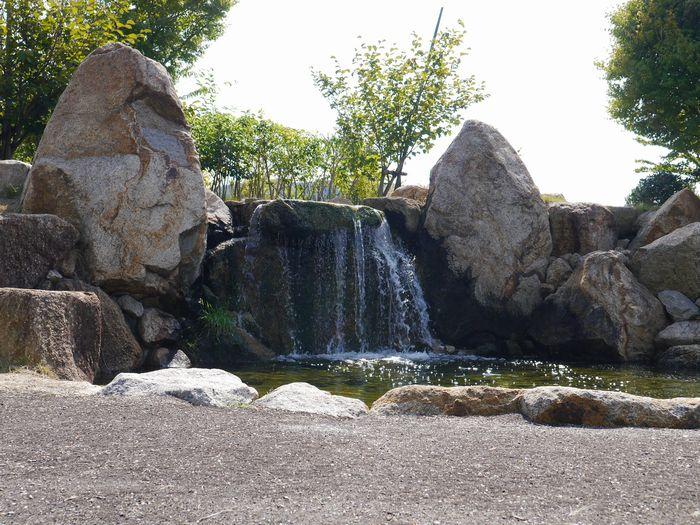 自然環境体験公園ツー (23)