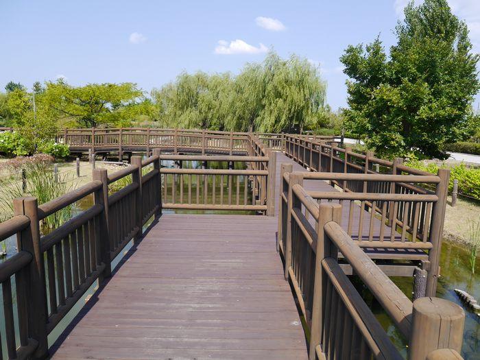 自然環境体験公園ツー (10)