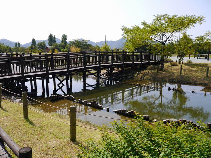自然環境体験公園ツー (13)