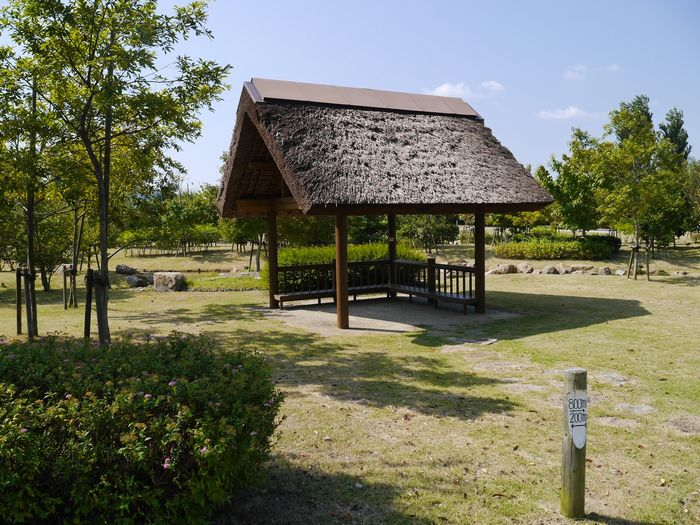 自然環境体験公園ツー (8)