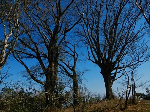 201304_ihaidake_32.jpg