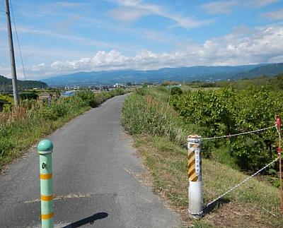 201305_kanogawa_09.jpg