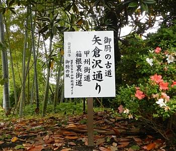 20130614_jogging_gotenba_09.jpg