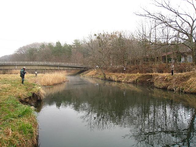 2013.3.30忍野桂川 (25)