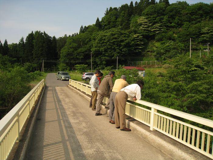 2013.6荒雄川 (84)