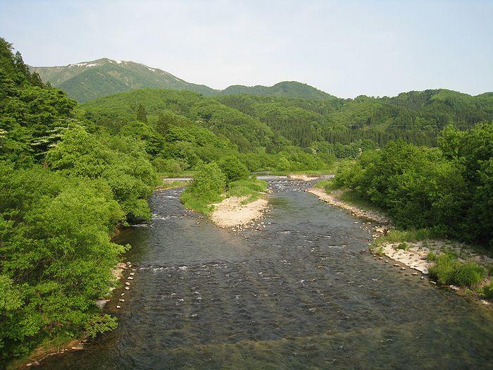2013.6荒雄川 (86)