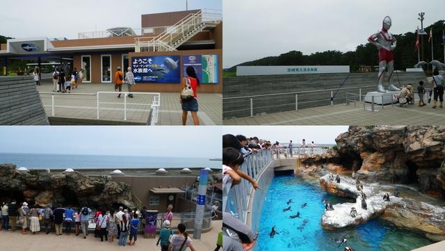 2013.7.31大洗海岸1