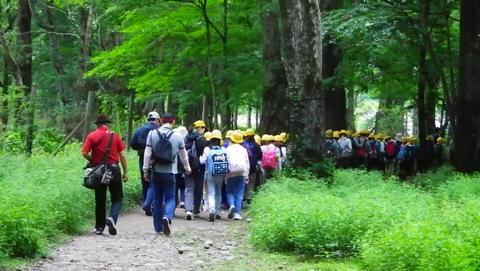 湯川ハイキング2013804 (53)
