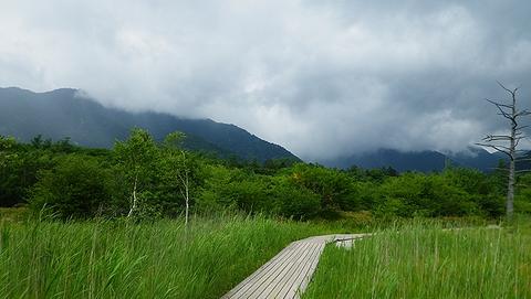 湯川ハイキング2013804 (95)