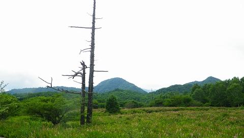 湯川ハイキング2013804 (88)