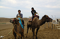 ラクダに乗って家族写真
