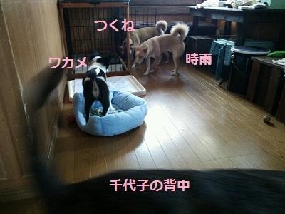 清麿 ユッケ