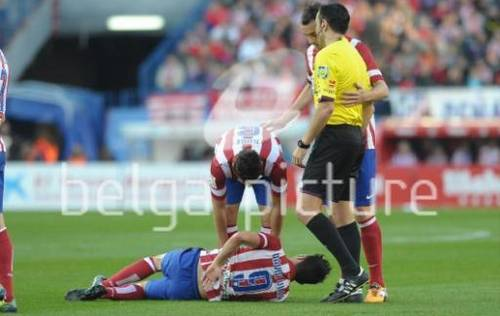 7 picture_50049422_preview_watermark