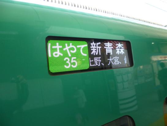 P1030204.jpg