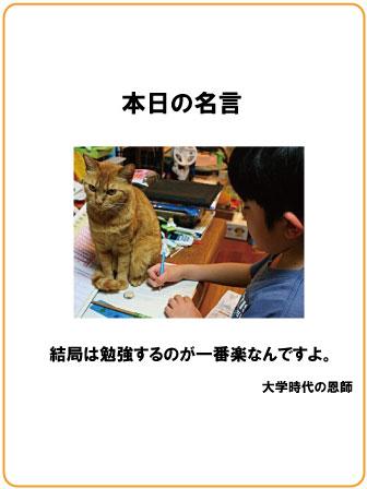2011111401441570d.jpg
