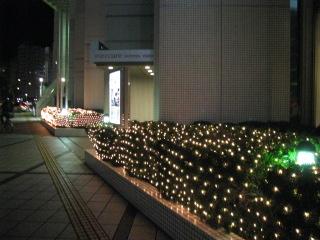 2013-11-23.jpg