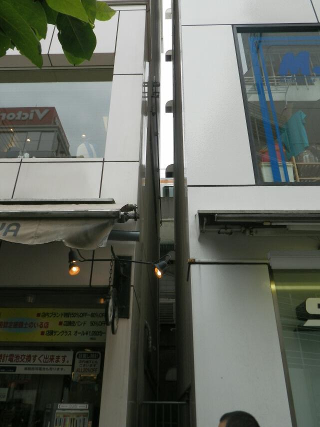 IMGP6584.jpg