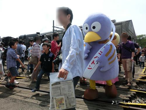 2013わくわく鉄道フェスタ_03