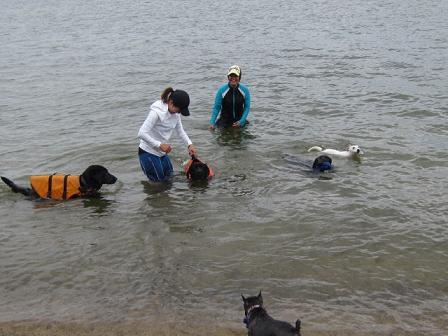 琵琶湖始め